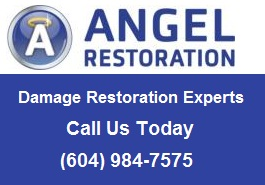 Angel Restoration Inc.