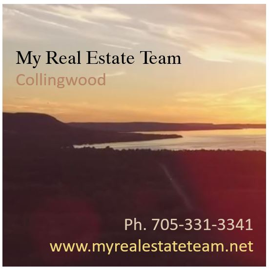 My Real Estate Team Collin