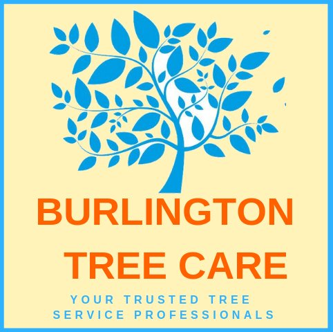 Burlington Tree Care